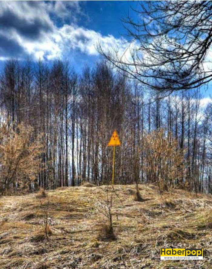 cernobil-kazasi
