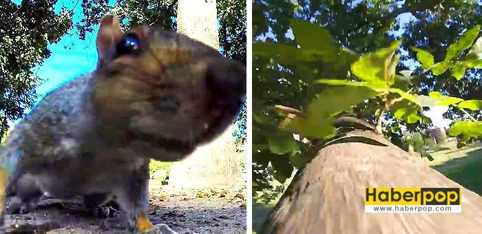 sincap-kamerayı-çaldı-videosu-izle-hd