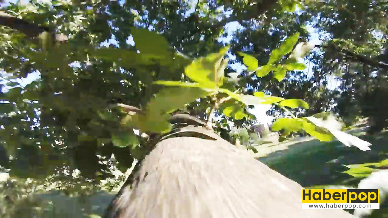 sincap-kamerayı-çaldı-videosu-izle