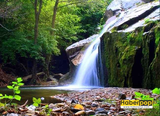 turkiyede-gezilecek-tarihi-ve-turistik-yerler-igneada kirklareli-longoz ormanlari